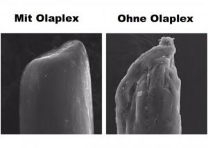 OLAPLEX Wirkweise